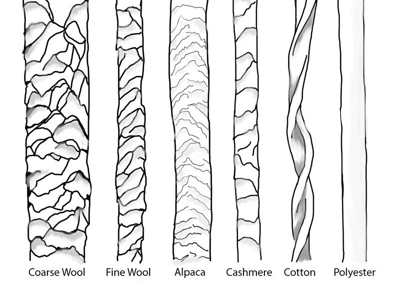 Microscopic Fibers